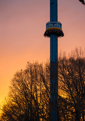 Mach Tower (zachclarke) Tags: buschgardenswilliamsburg buschgardenseurope buschgardens bgw bge christmastown ct christmas sunset oktoberfest germany machtower droptower observationtower tower moser nikon nikond5600 d5600 zachclarke2 zachclarke 2018 december holidays holiday winter