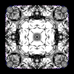2019 0109 organic black and white koan 2 (Area Bridges) Tags: 2019 201901 20190109 video square squarevideo experiment iteration ttvframe pentax automated automation pan zoom vegaspro edit editing render videocollage animated animation