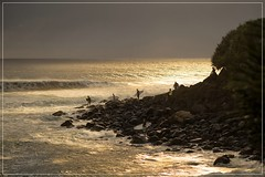 Early morning at Burleigh Heads (georg_dieter) Tags: goldcoast australia burleighheads surfing surfer sunrise beach pacific