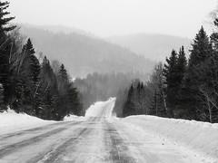 le mont Albert (Mccin) Tags: forêt montalbert montagnes neige randonnée raquette