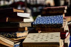 Livres (Meculda) Tags: france photographie photo picture hiver 2019 nikon livres couleur bleu ouge blue red book marché 35mm
