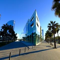 Desigual_Barcelona (FD8591) Tags: 201812 barcelona