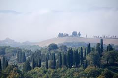 morning fog in tuscany III (Anna-logisch) Tags: zypressen toskana morning fog landscape sky cypresses tuscany italy nikond7000