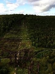IMG_6392_eh (wyldanthem) Tags: allegheny national forest