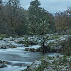 El efecto de las lluvias (pedroramfra91) Tags: naturaleza nature exteriores outdoors agua water rocas rocks rio river arboles trees bosque wood autumn otoño paisaje landscape