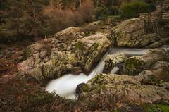 La poza. (Amparo Hervella) Tags: rascafría comunidaddemadrid españa spain paisaje roca río agua árbol naturaleza largaexposición d7000 nikon nikond7000 arroyo