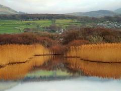 Reflections (Defabled) Tags: reflections talybont gwynedd