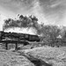 Crossing the bridge (Rob Mesite) Tags: owosso1225peremarquettesteamtrainraillerroproductions