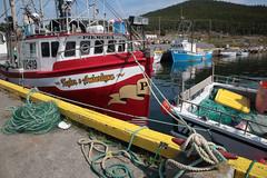 Taylor & Amberlynn (peterkelly) Tags: digital northamerica canada newfoundlandlabrador canon 6d heartscontent harbor harbour fishing dock red yellow ship trawler rope water boat trinitybay