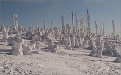 Winterfreude für die Fotografen / Winter pleasures for the photographers (ludwigrudolf232) Tags: schnee schneemännchen winter dreisessel bäume verwehung