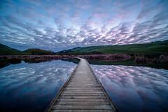 Cloud City (ajecaldwell11) Tags: boardwalk hawkesbay sunrise reflection ankh pink water pekapekaswamp sky newzealand dawn caldwell clouds light