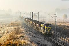 SM42-2429 [Kolej Bałtycka] (wylaczpantedlugie) Tags: sm42 marzenin kolej bałtycka zwk