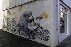 Majestic birds (aerojad) Tags: eos canon 80d dslr 2018 landscape vacation travel wanderlust iceland2018 iceland october autumn reykjavik reykjavík streetphotography streetscape art artinpublicplaces mural murals graffiti