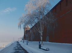 Зимнее утро (lvv1937) Tags: нижнийновгород кремль утро берёзка мороз мыизяфа explore