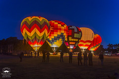 Launch of the Dawn Patrol (allentimothy1947) Tags: califoria windsor balloons basket bluehour burn crew dawn dawnpatrol earlymorning fire gas glow green hotairballoon launch lit patterns people preparation red silhoette sunrise trees yellow
