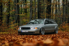 Autumn... (Hasan Yuzeir 📷) Tags: autumn audi a4 hasanyuzeir canon 1300d forest nature stance