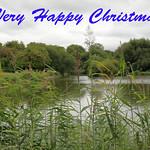Christmas Greeting thumbnail