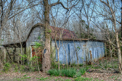 DMT_20180403151624 (Felicia Foto) Tags: allrightsreserved denisetschida barn shed ruraldecay agricultural grass trees rural tennessee middletennessee woodburytennessee cannoncountytennessee metal tin wooden overgrown hdrfromsingleraw photomatix photoshopcc2019 nikon nikond600 d600 architecture earlyspring rust abandoned geotagged blue winter gravelroadphotography hdr highdynamicrange