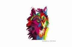 POP ART WOLF, großer Print Patch zum aufbügeln (patchmonkeys) Tags: patch bügelbild style applikation aufbügler streetwear print druck design hund kopf transfer wild