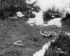 Remains (graemes83) Tags: pentax lx jupiter m42 film 35mm 5222 black white monochrome hills outdoors landscape countryside rural