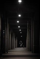 Night walks (reiko_robinami) Tags: street streetphotography night passage dog outdoors oneperson monochrome urban blackandwhite yokohama japan