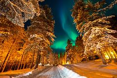 Aurore boréale prise depuis la zone des chalets (Jérôme LÊ) Tags: finlande laponie savukoski samperinsavotta finland lapland aurore auroreboreale aurora northernlights revontulet nikonpassion