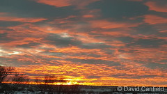 November 13, 2018 - A gorgeous sunrise on the Front Range. (David Canfield)