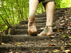 Woodland steps (Barefoot Adventurer) Tags: barefoot barefooting barefooter barefoothiking barefeet barefooted baresoles barfuss woodland woodlandsoles walking wrinkledsoles toughsoles texture toes tiptoe strongfeet stainedsoles soles livingleather leathertoughsoles tough anklet autumnbarefooting autumnsoles arch connected callousedsoles earthing earthstainedsoles earth energy healthyfeet happyfeet hardsoles wetmud wetsoles climb callouses woodlandmud sole ruggedsoles