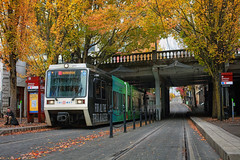 Autumn In Old Town (Ian Sane) Tags: ian sane images autumninoldtown old town portland oregon 1st avenue trimet train max tracks burnside bridge urban street photography autumn fall colors landscape canon eos 5ds r camera ef50mm f14 usm lens