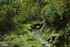 ACEQUIA RUTA DE TELLO 3 (Asomados al Mundo) Tags: alpujarra alpujarras agua lanjarón acequia