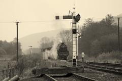 Levisham arrival (feroequineologist) Tags: 5428 black5 lms nymr railway train steam levisham levishamstation northyorkshiremoorsrailway