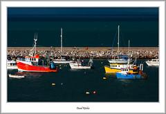 Harbour Colours (flatfoot471) Tags: 2016 70300canon boats devon england fishing holiday july marina normal summer unitedkingdom urban brixham gbr