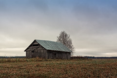 Old Barn House Against The Grey Skies (k009034) Tags: 500px wooden copy space finland outdoors tranquil scene abandoned agriculture architecture autumn bare tree barn house building clouds farm farming fields forest loneliness nature no people old sky trees teamcanon copyspace tranquilscene baretree barnhouse nopeople