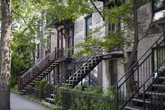 Escaliers de Montréal (MarieDeschene11) Tags: mtl montréal canada québec ville city stairs escaliers plateau montroyal rue street été summer