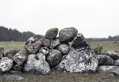 Wall (arkland_swe) Tags: snoder sweden gotland wall stonewall gärdesgård stenmur mur sten rock boulder lichen lav