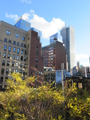 2018 November Dropping Leaves Tree 4214 (Brechtbug) Tags: 2018 november dropping leaves tree virtual clock tower from hells kitchen clinton near times square broadway nyc 11032018 new york city midtown manhattan fall autumn weather building dark low hanging cloud hell s nemo southern view ny1rain