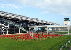 London Southend Airport (Keith B Pics) Tags: 19182018 remembrance worldwarone 19141918 111118 lestweforget poppies keithbpics londonsouthendairport stobart essex southendairport sen egmc armistice