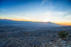 untitled (5 of 28).jpg (xen riggs) Tags: desert california joshuatreenationalpark february2018