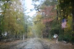 Through the windshield (Read2me) Tags: autumn pree cye tcfe tree leaf window rain street flag perptualchallengewinner