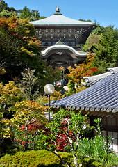 Japan: Miyajima, Daisho-in temple complex (Henk Binnendijk) Tags: shingonbuddhismhiroshimajapandaishoinmiyajima island hatsukaichi