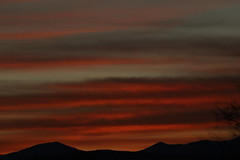 Sunrise 1 16 19 #06 (Az Skies Photography) Tags: sun sky skyline skyscape rio rico arizona az riorico rioricoaz arizonasky arizonaskyline arizonaskyscape cloud clouds red orange gold salmon black january 16 2019 january162019 11619 1162019 canon eos 80d canoneos80d eos80d canon80d arizonasunrise rise sunrise morning dawn