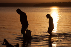 Father & son (Mikey Down Under) Tags: australia boy coast collecting dive fishing gathering lake lakeside man mask nsw orange shell silhouette son south stgeorgesbasin sunset water
