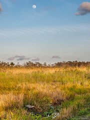 Supermoon over the Everglades (N3ptun0) Tags: anhingatrail enp evergladesnationalpark nationalpark nature park