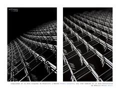 Pablo (SIMETRÍA ESPINOSA | THORNY SYMETRY) (8de3.com) Tags: alfonsovalle 8de3com barmaceutiko barmacia barmacéutiko drbarmacéutiko drbarmaceutiko cartel cartelería blancoynegro monocromático blackandwhite bw bnw byn hierro iron ferro feralambrada wirefence clôturedefil cercadearame líneas geometría