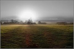 Early morning blues (johan van moorhem) Tags: belgium belgique belgië flanders vlaanderen westvlaanderen beernem stjoris wandeltocht demoedigewandelaars wandelclub bloemendaletocht morning sundaymorning sunrise zonsopgang landscape outside