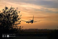 Atardecer (loscar20) Tags: sunset spotter planespotters airport planes atardecer aeropuerto sevilla seville spain españa sony sonya6000 a6000 bealpha beautiful andalucia spotting planespotting