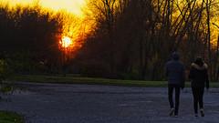 Promenade d'automne (Alexandre LAVIGNE) Tags: hdpentaxdfa150450mm pentaxk1 scenedevie ambiance automne k1 lumière nature promenade sunset saintquentin picardiehautsdefrance