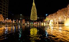 Mayor's Christmas Tree Reflections (KC Mike Day) Tags: tree christmas reflection water fountain pavement concrete center crown kcmo missouri city kansas
