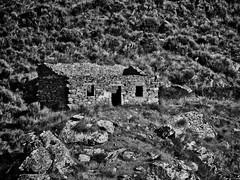 La casa de la ladera (Luicabe) Tags: airelibre arbusto blancoynegro cabello cañón casa edificio enazamorado exterior gris ladera luicabe luis mampostería monocromático naturaleza ngc roca ruina sayago vegetación ventana yarat1 zamora