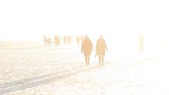 light (Mattijsje) Tags: overexposed over exposed overbelicht dof schaduwen shadows tegenlicht strand beach sand zand wit light licht figuren figures personen persons wandelaars hikers